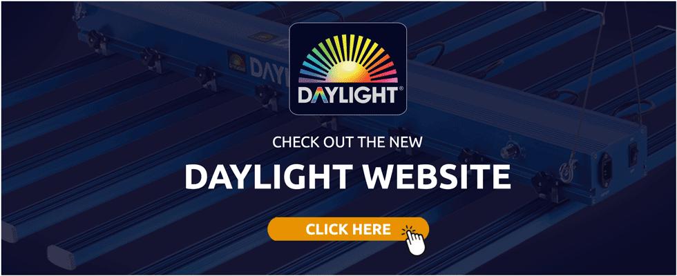 DAYLIGHT website